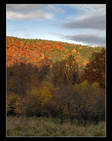 Autumn hill by hgabi