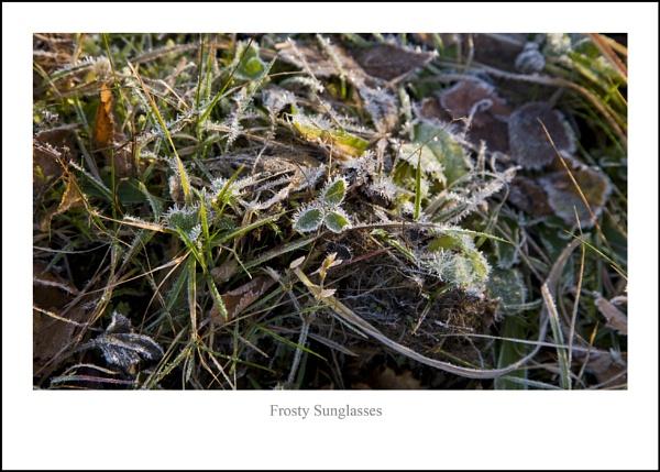 Frosty Sunglasses... by Scottishlandscapes