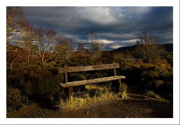 Glen Affric by gemeit