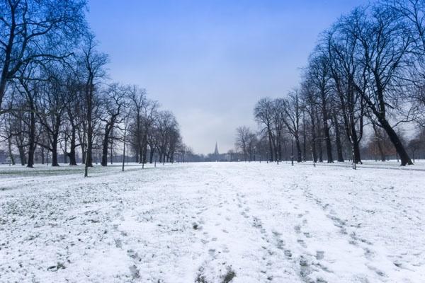 Winter scene by garnham123