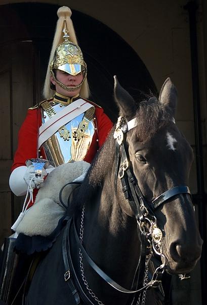 Horse Guard by Lenz