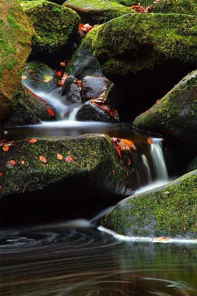 Autumnal Padley