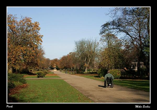 Albert Park by oldgreyheron