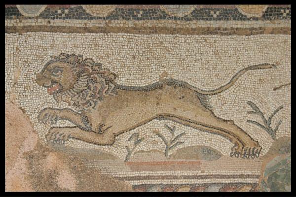 Lion Mosaic by Jennie277