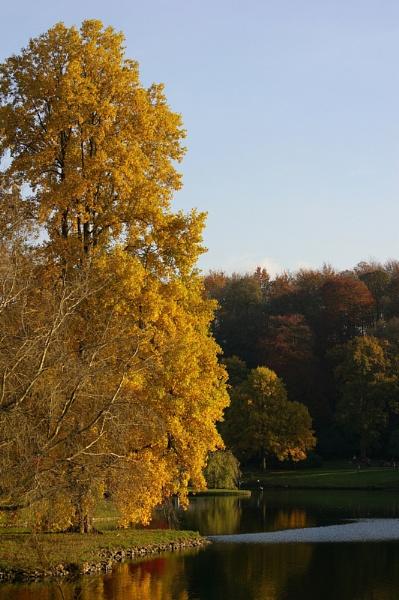 Autumn Colours III by theeyesoftheblind