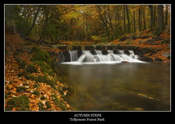 Autumn Steps by Sconz
