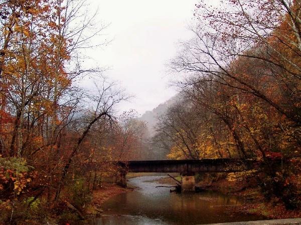the bridge by dawnmichelle