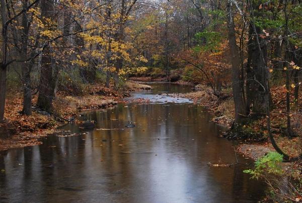 River\'s Edge by Rainy