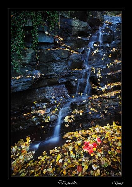 Fallingwater by rusmi