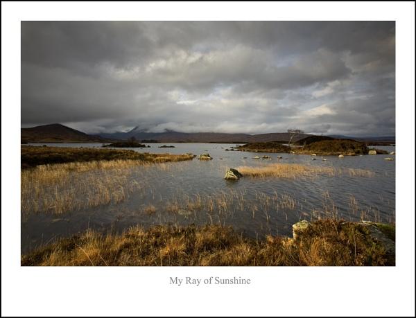 My Ray of Sunshine... by Scottishlandscapes