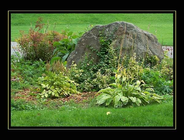 Rock-Garden by JimV