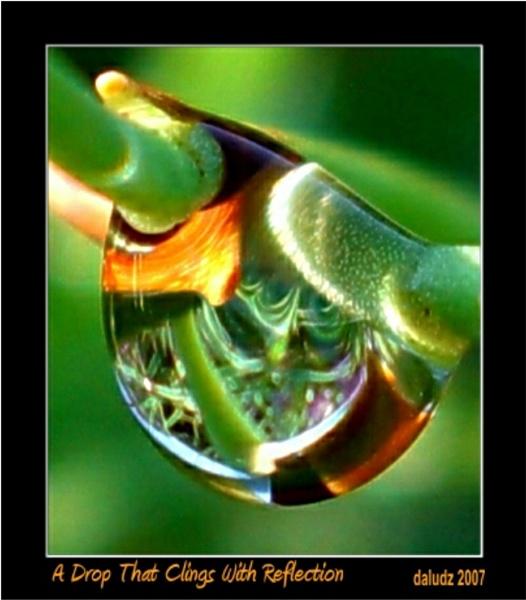 A Drop That Clings by LourdesV