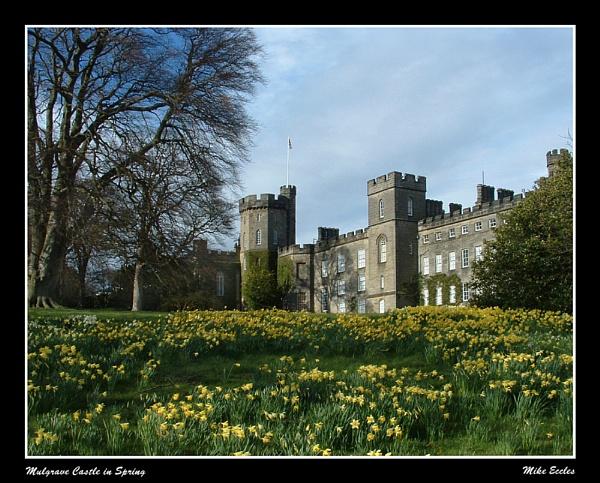 Mulgrave Spring by oldgreyheron