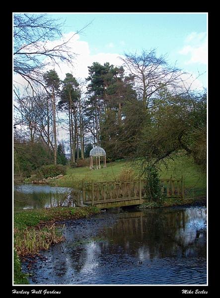 Harlsey Spring by oldgreyheron