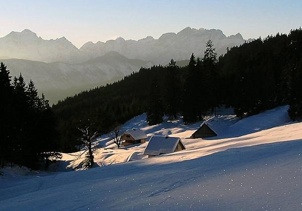 winter by joze