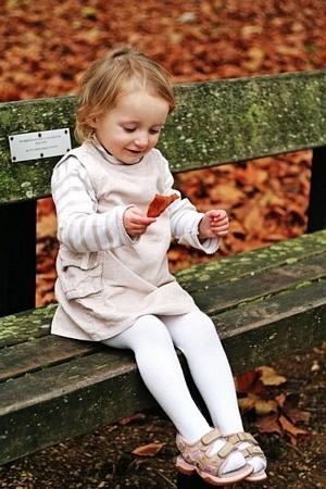 Autumn Leaf by saviour99