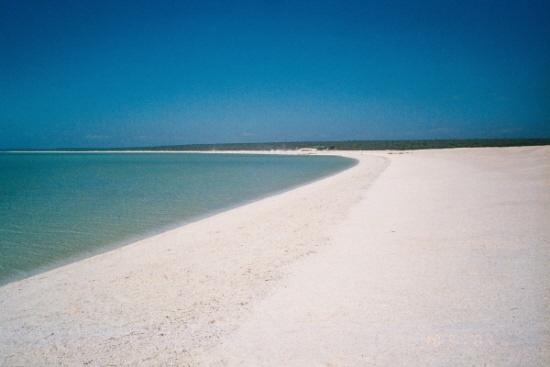 SHELL BEACH by JAILER68
