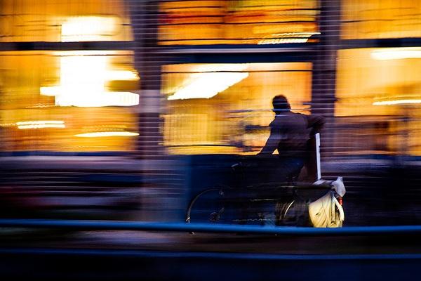 Night Rider by robs