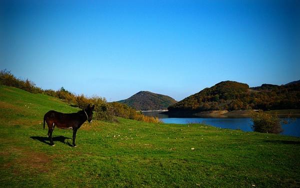 Tzonevo Dam /Lake by acbeat
