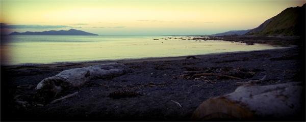 Kapiti Island by Leary