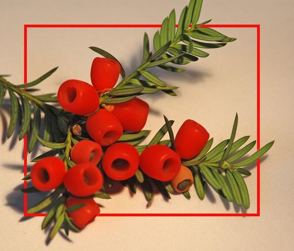 Very berry Christmas! by sparklep