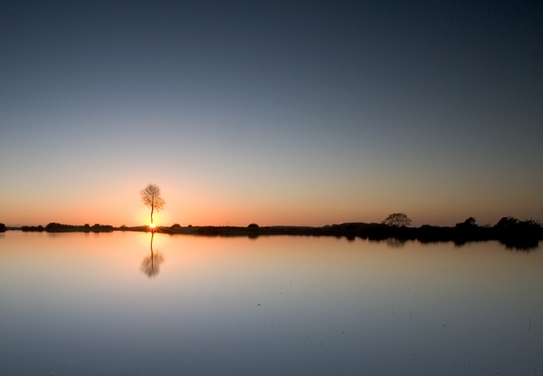 ""\""""New forest Reflections 3"""" by John Giddings""600|415|?|en|2|57703b37930c9b77e343d3a5451303b1|False|UNLIKELY|0.29016441106796265