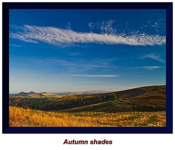 Autumn shades by GBYORKE
