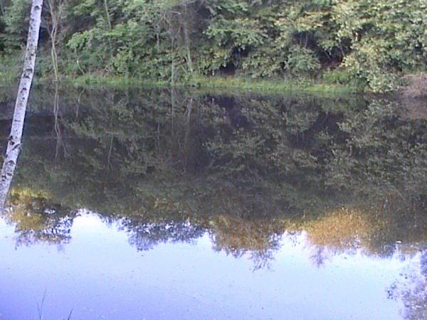 water mirror by saber
