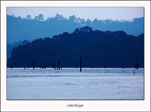 Lake Periyar by GillyB