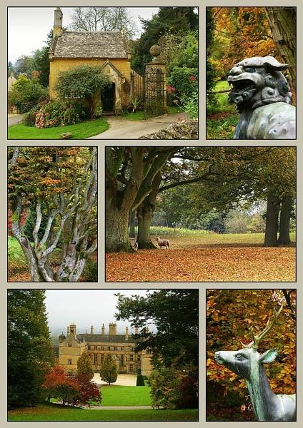 Arboretum by davidhu