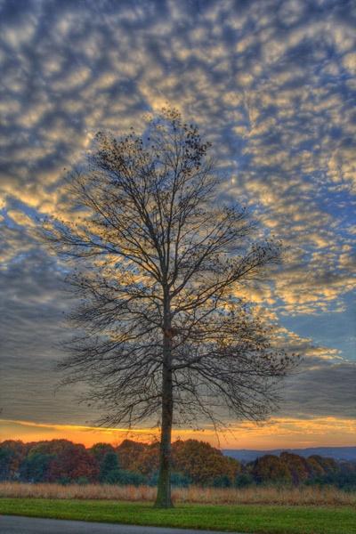 Autumn Sunrise by skoffs