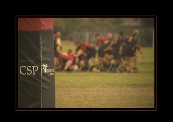 Forces Rugby by Stevebishop