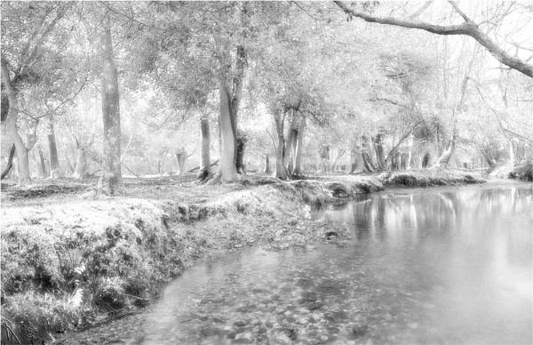 "\"" Dockens Water \"" by John Giddings"