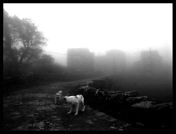 Village in the Fog by Nirithmos