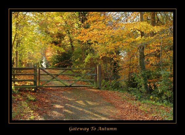 Gateway To Autumn by Valerie1