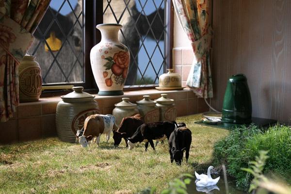 Kitchen Pasture by Curtain