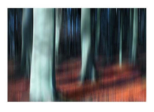 Wood Impression by xinia