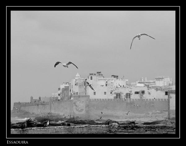 Essaouira by ferguspatterson