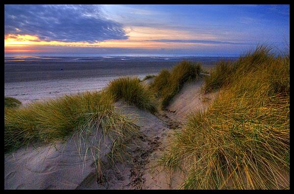 sand dunes by garyg