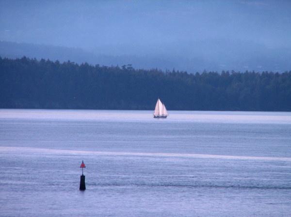 island sail by Bear46404