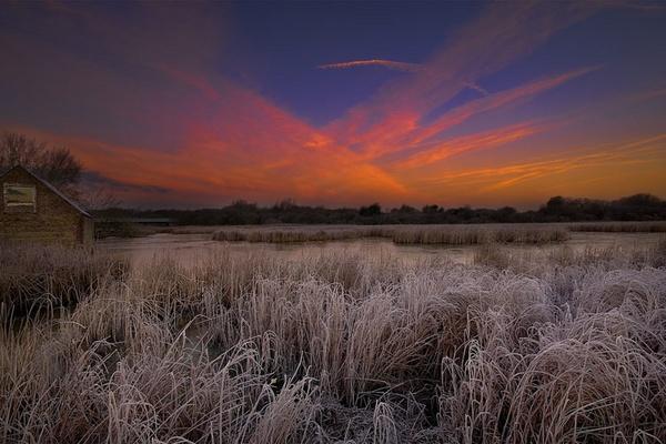 Frozen by Darren9330