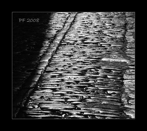 PF 2008 by svatos