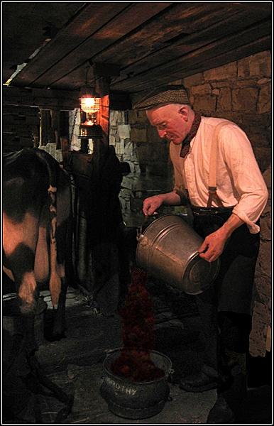 Milking Parlour by lancs-lad