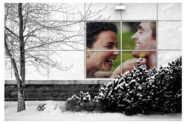 framed by winter by A_Harrison