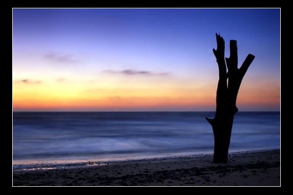 Stumpy Sunrise by FatHandedChap