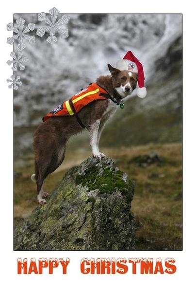 Santa\'s little helper by GeorgeLedger