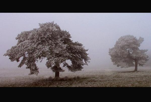 freezing mist by bobalot