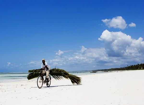 Matembwe beach transport links by shellby