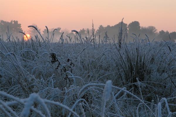 Frosty Sundown by FeePhoto