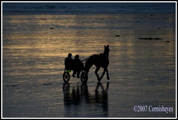 Evening Trot by CornishEyes